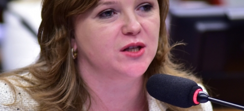 Líder da Bancada Verde se posiciona contra fusão de ministérios