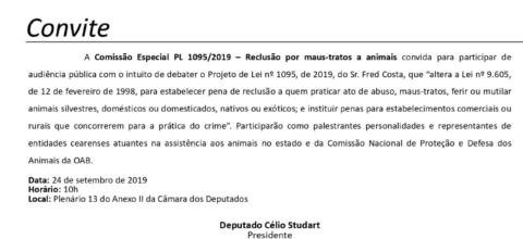 Entidades cearenses vão a Brasília debater reclusão para maus-tratos a animais