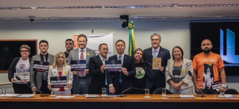 Protetores de animais do Ceará vão à Câmara debater aumento de pena para maus-tratos