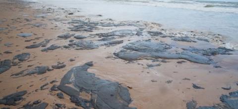 Proposta de Célio para fiscalização sobre derramamento de óleo é aprovada